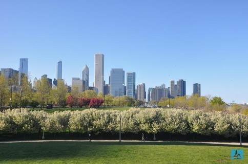 Chicago Downtown, Illinois, U.S.A.