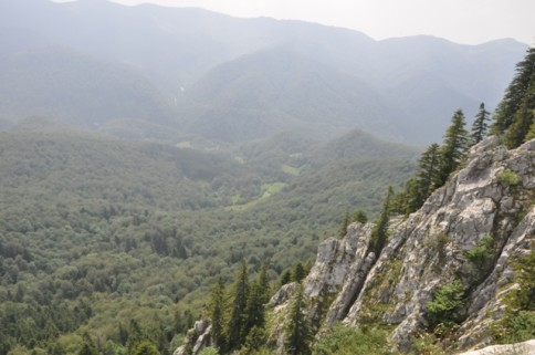 Crisana Region has many natural and architectural beauties