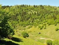 hartibaciu plateau