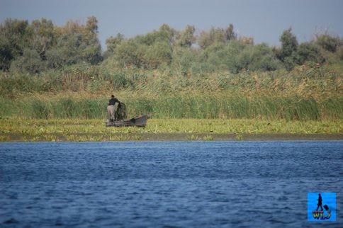 Fishing in Danube Delta