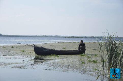 Fisherman in Danube Delta