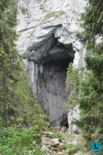 Cetatile Ponorului (Ponorului Citadels) are among the best caves to see in the park