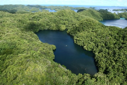 Airview of Jellyfish Lake from the Rock Islands, Republic of Palau