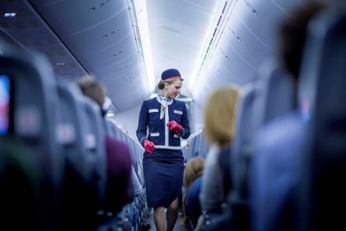 get a job and travel flight attendant